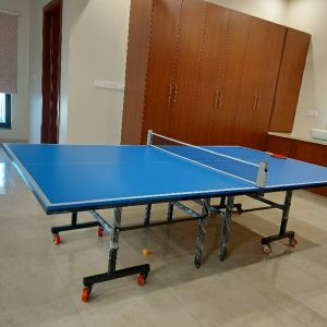 International Standard Foldable Table Tennis Table Standard Size 9'x5'